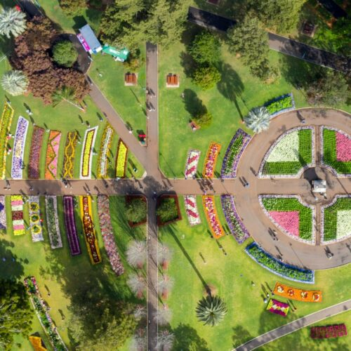 Toowoomba-carnival-of-flowers (9)